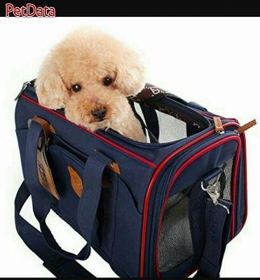فروش انواع کيف هاي حمل سگ و گربه