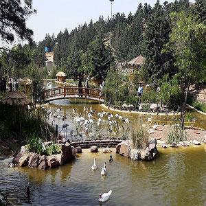 باغ پرندگان  تهران - دریاچه